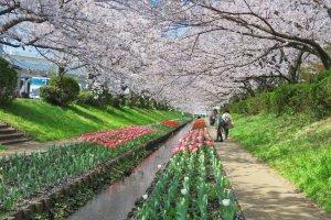Egawa Park