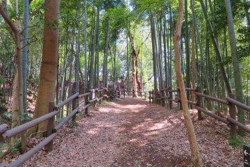 Kozukue Castle Ruins trail