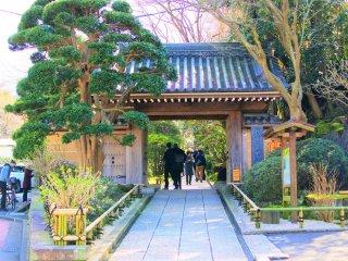 Hokoku Temple