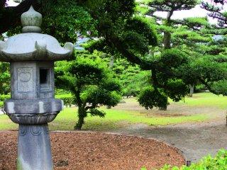 Lantern and pine trees
