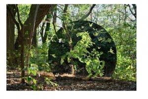 메이지징구 숲속의 예술 축제