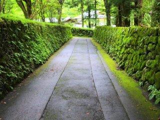 The scenery of Nikko