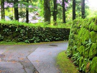 More Nikko scenery