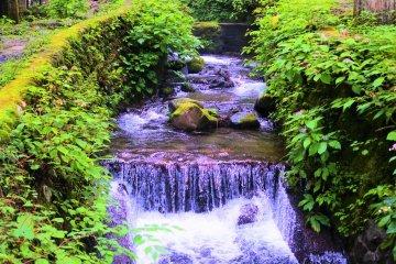The stream in the precinct