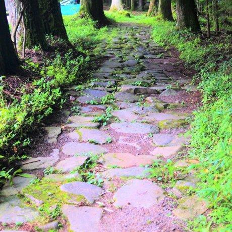 Along Nikko's Old Takino Kodo