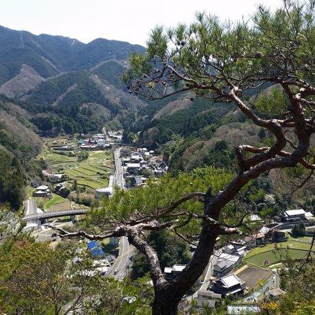 Amami Village
