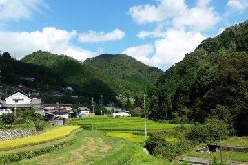 Shima-no-Tani