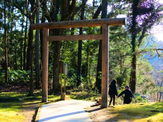 Another Torii in the precinct