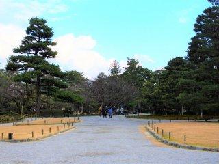 唐崎松の風景 2