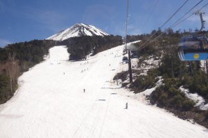 Looking down from the Flying Ciao at the runs on a spring day