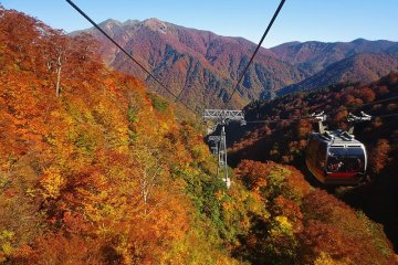 The dizzying heights of the ropeway offer some amazing views