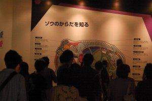 Crowds gathering around the information
