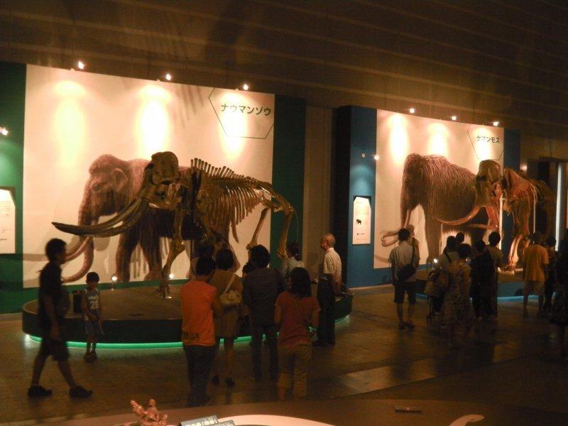 People mingle at the Yuka 2013 exhibit
