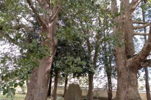 Educational monument in Kodokan