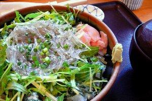Shirasu-don, baby sardines on a bed of rice