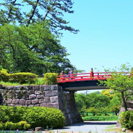 初夏の小田原城