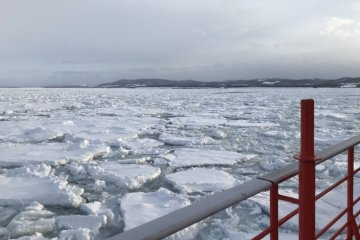 Far north in Monbetsu, the sea is blanketed with drift ice