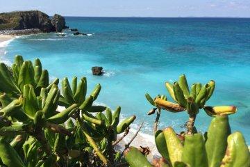 Azure waters in Okinawa