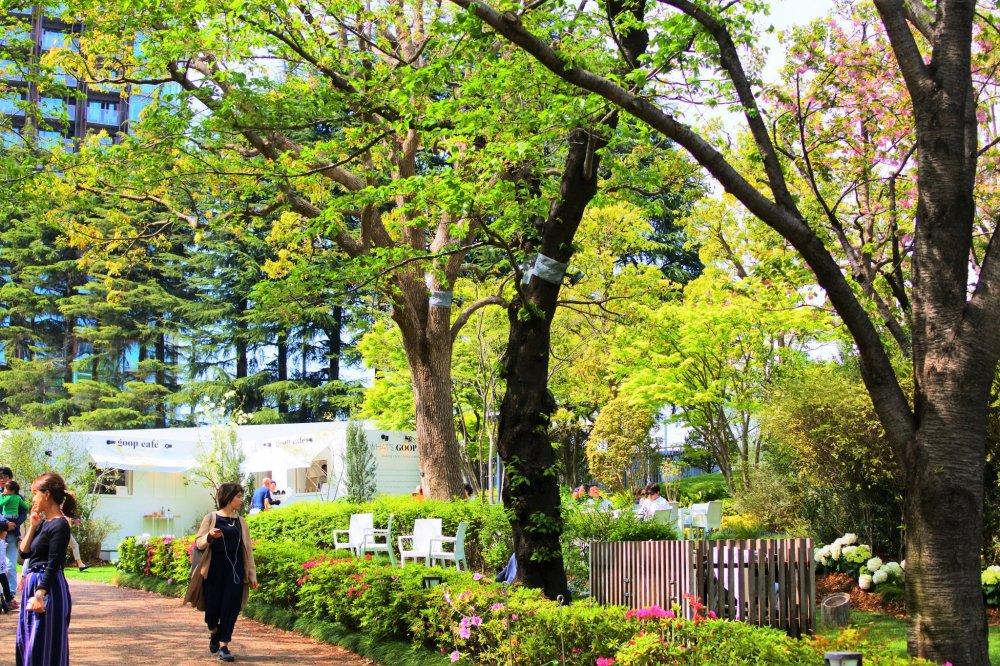 ミッドタウン・ガーデンの風景