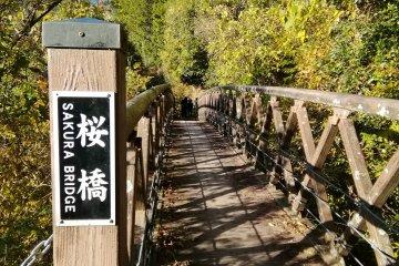 Sakura Bridge, Love Romance Road