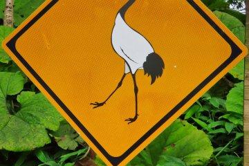 Crane Crossing Road Sign