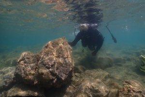 沉下身子,紧紧抓住岩石是第一招。