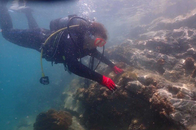 Beginning to enjoy floating around and watching the underwater world.