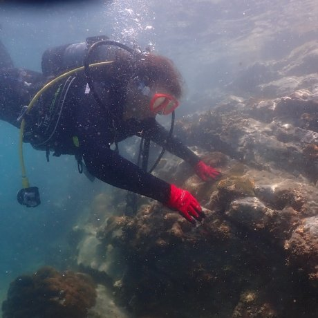 Scuba Diving in Kushimoto