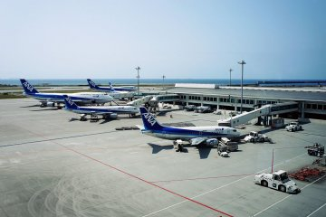 Both domestic and international routes operate through this airport