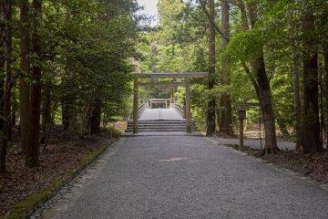 Naiku Forest