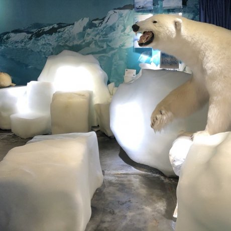Le Musée des glaces flottantes à Mombetsu