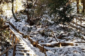 An alternative route up the mountain