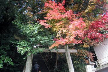Entrance torii in Autumn