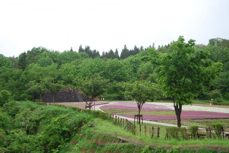 The park is set up on a hillside