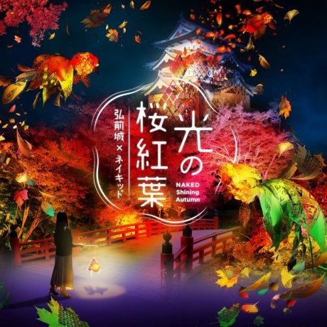 Hikari no Sakura-Momiji