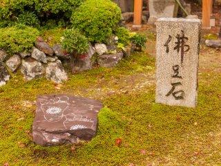 След Будды
