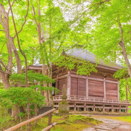 新緑の平泉中尊寺