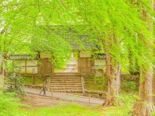 青葉の大長寿院