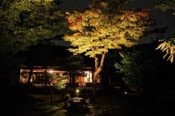 The autumn illumination creates a different world than that of day
