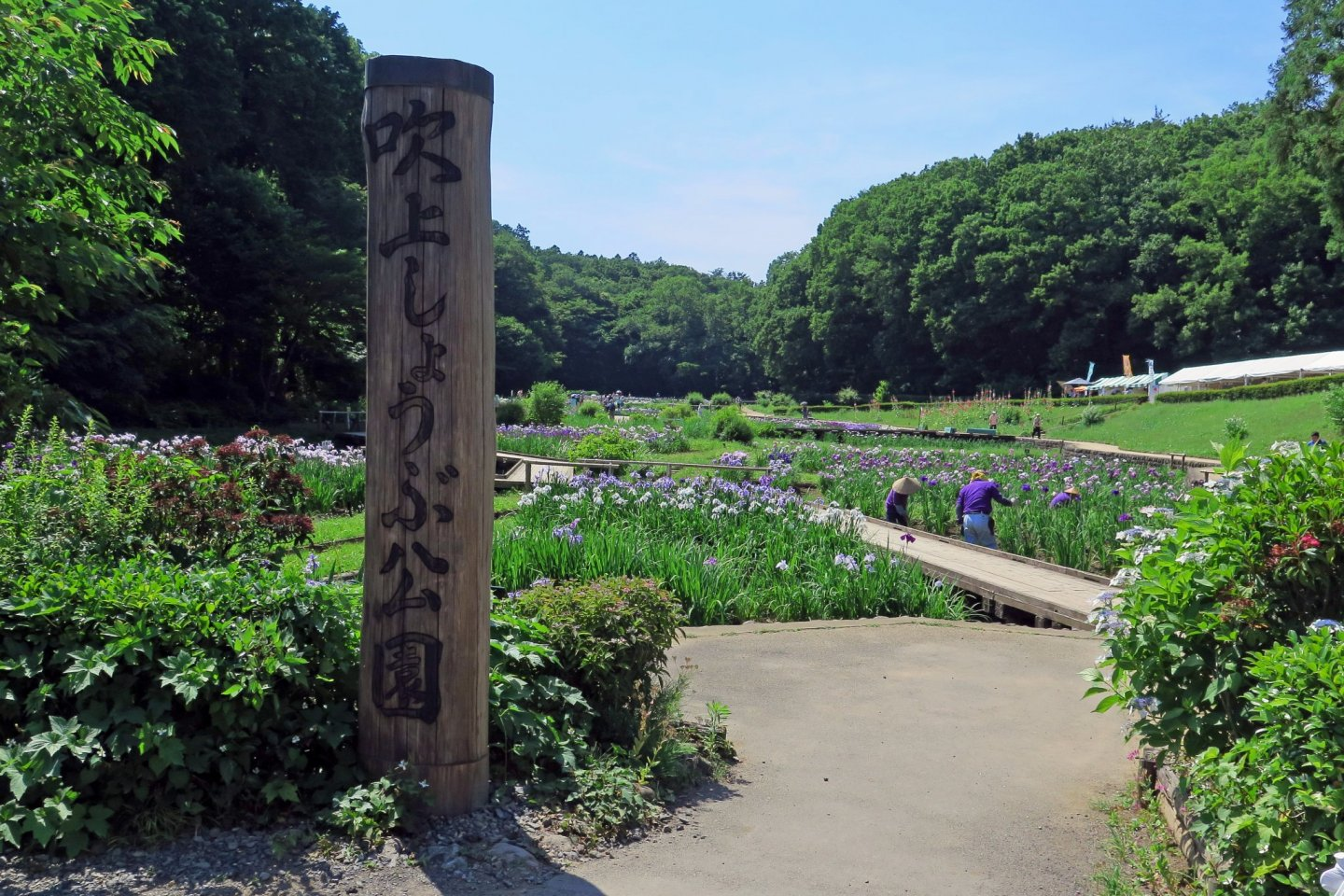 The entrance to the iris park