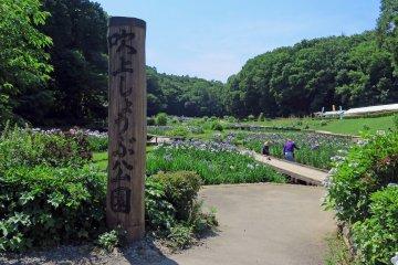 Fukiage Iris Park