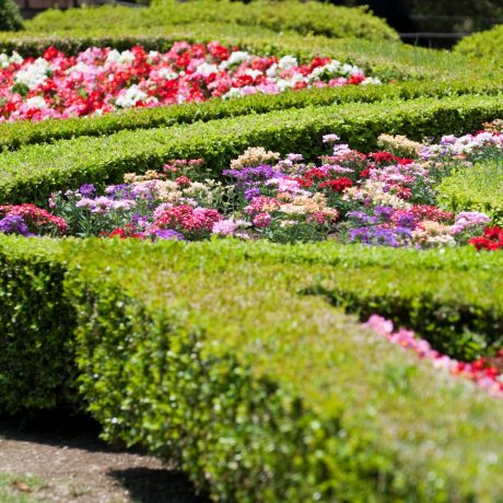 Kita City Ward - Parks & Gardens