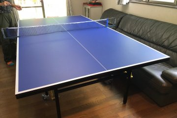 Fancy a game of ping-pong!