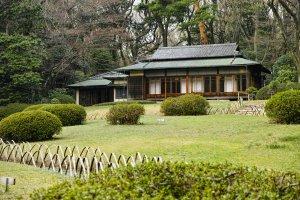 Meiji Jingu Garden