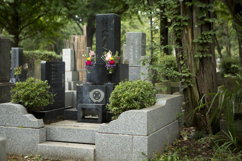 Khói hương dâng lên từ một ngôi mộ đã không được viếng thăm từ lâu