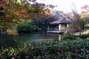 A pavilion in the tea garden