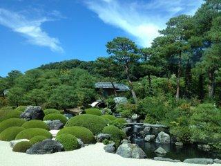 В садах Адати представлены камни и сосны, свезенные сюда со всей Японии.