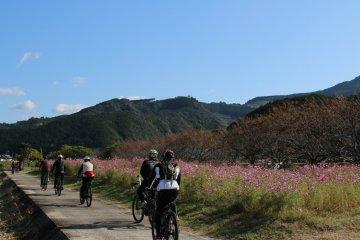 Ichi-no-se District in Kamitonda Town