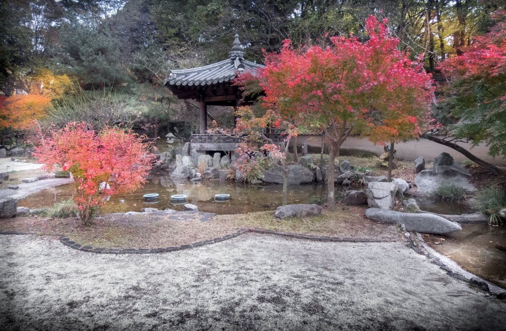 The park's Korean Garden