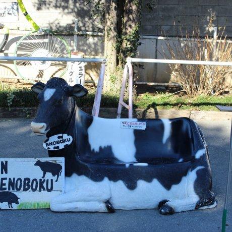 Enomoto Dairy Farm
